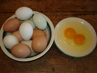 Eggs_for_online_market_002